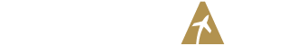 JETWAYS Logo