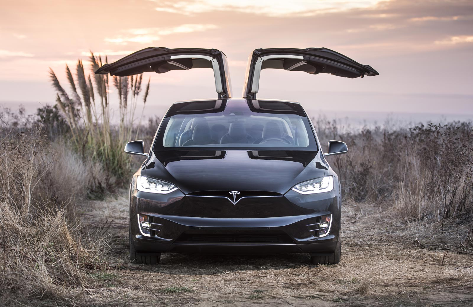 Photograph of Tesla Model X